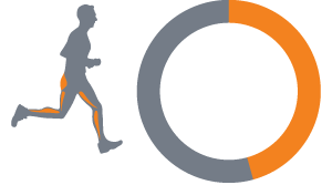 45 Percent 300 Cal Running