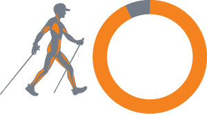 90 Percent 300 Cals   Pole Striding